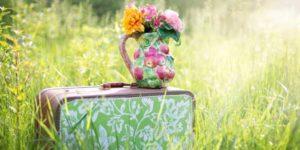 Koffer mit Blumenvase